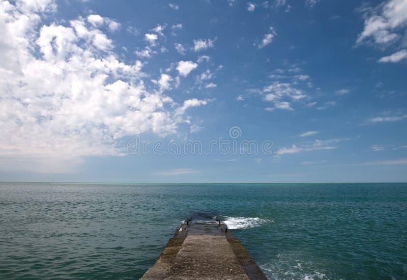 konkret pirhav för svart kust arkivbild