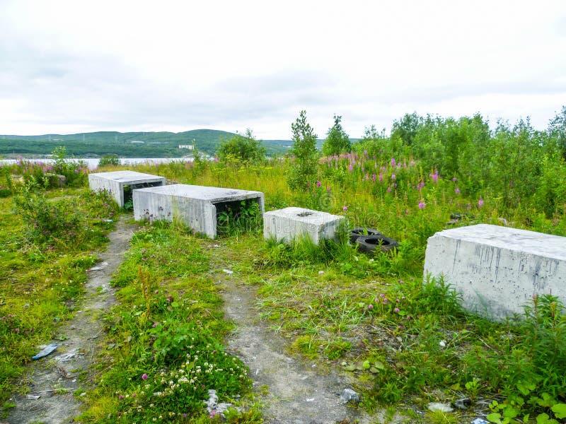 Konkreta kvarter på en övergiven ofruktbar mark på en molnig sommardag royaltyfria bilder