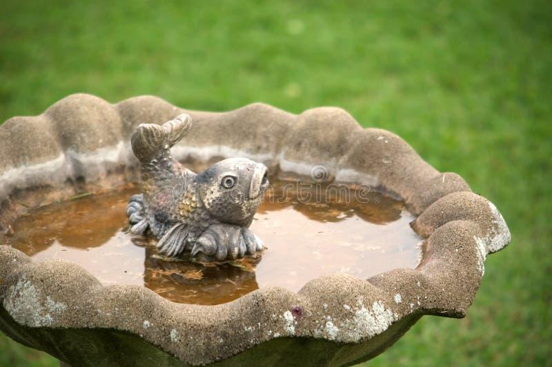 Download Konkrete Fische stockfoto. Bild von wasser, dekoration, birdbath - 26204