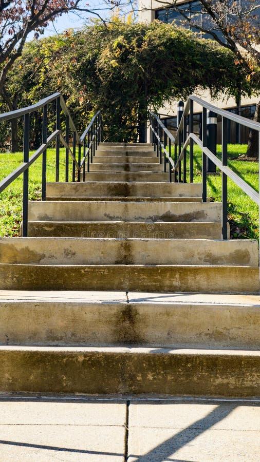 Konkretes Treppenhaus in einem Park, der zu ein Bürogebäude führt lizenzfreie stockfotos