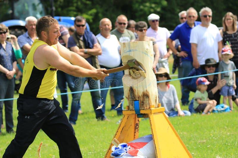 Konkurent sieka jego belę z cioską w drewnianym ciapania wydarzeniu przy kraju przedstawieniem fotografia royalty free