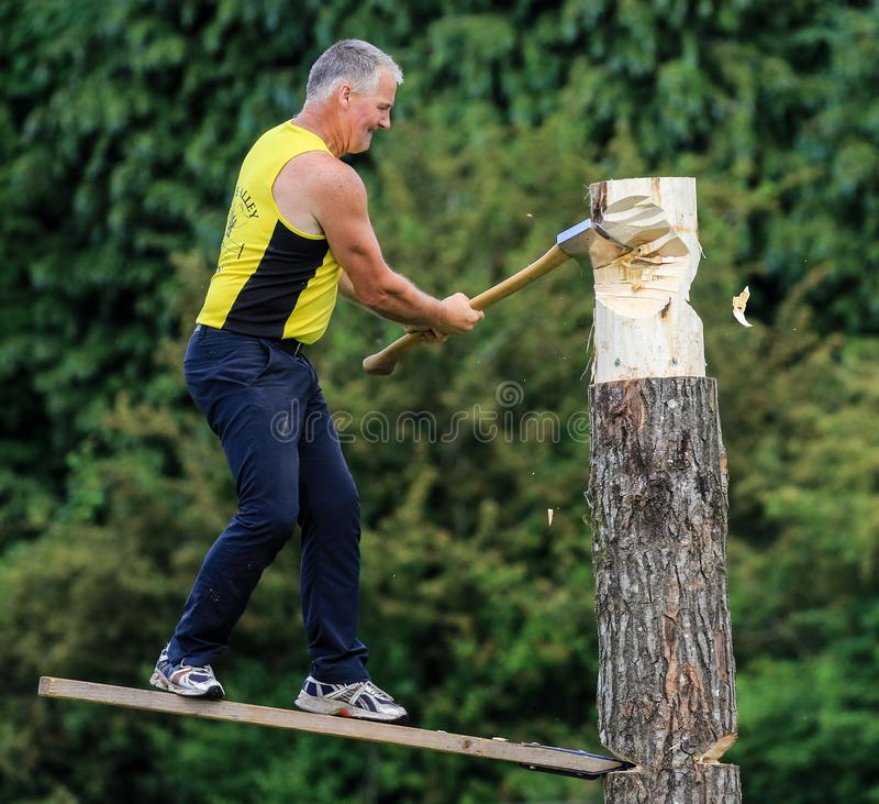 Konkurent sieka jego belę z cioską w drewnianym ciapania wydarzeniu przy kraju przedstawieniem obrazy royalty free