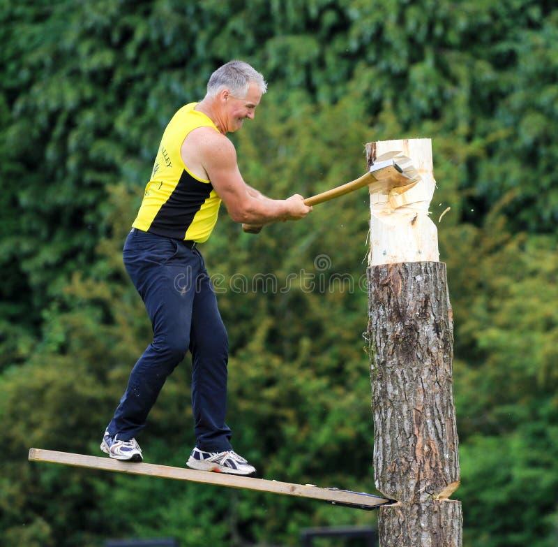 Konkurent sieka jego belę z cioską w drewnianym ciapania wydarzeniu przy kraju przedstawieniem obraz stock