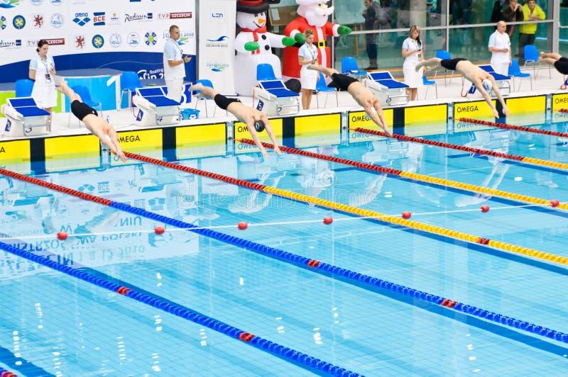 konkurrens som startar simmare till royaltyfri foto
