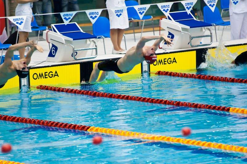 konkurrens som startar simmare till royaltyfri bild