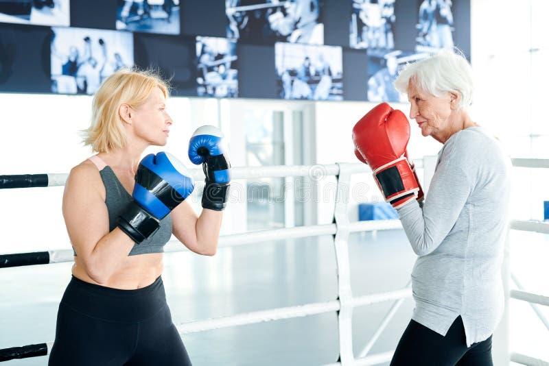 Konkurrenter i boxninghandskar arkivbild