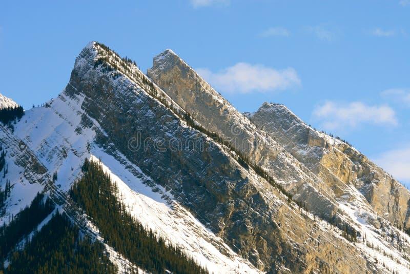 Konkurrenz in den kanadischen Bergen stockfotografie