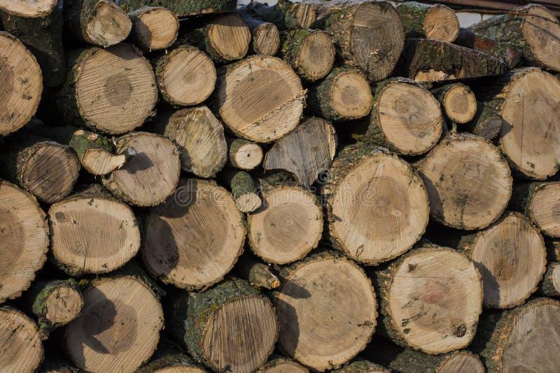 Konopie dla prac na drewnie zdjęcie royalty free