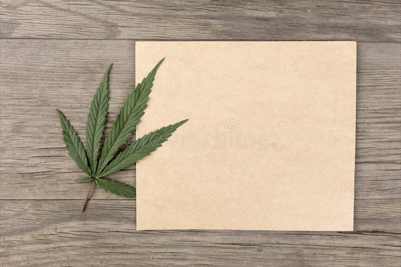 Konopie opuszcza i kwitnie z rzemiosło pustym papierem na starego grunge drewnianym tle Odgórny widok Minimalistic mockup fotografia stock