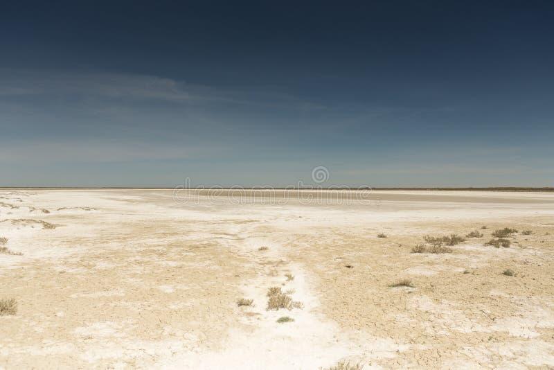 Konsequenzen der Aral-Seekatastrophe Sandy-Salzw?ste auf dem Ort der ehemaligen Unterseite von Aral-Meer stockfotos