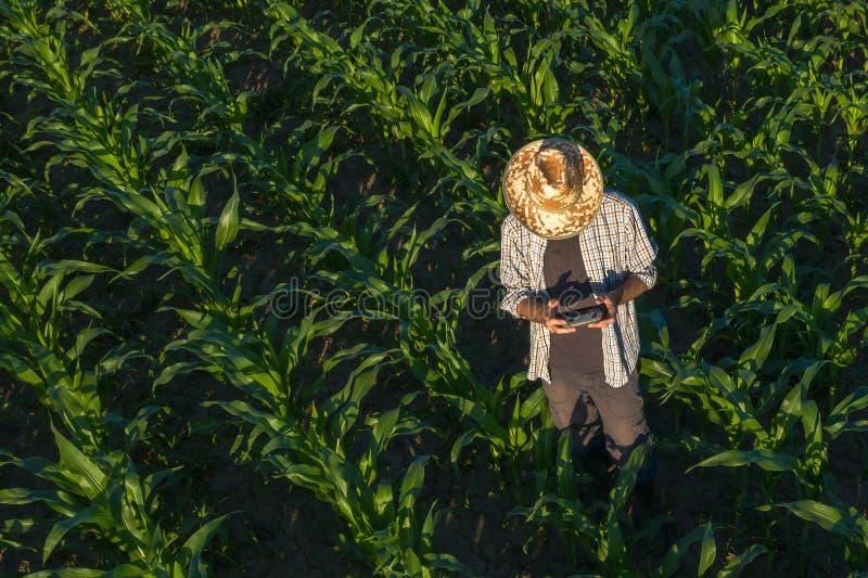 Konservera bonden med den avlägsna kontrollanten för surret i fält arkivfoto