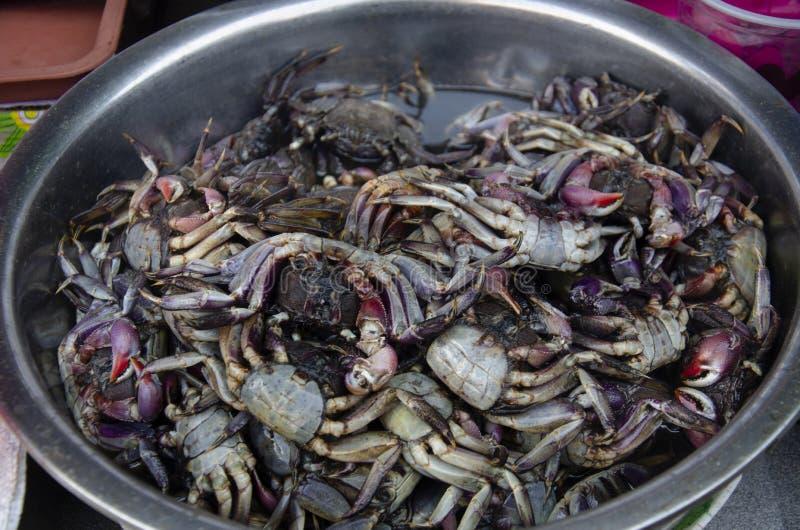 Konservierte ricefield Krabbe mit gesalzenen Krabben im rostfreien Becken lizenzfreie stockbilder