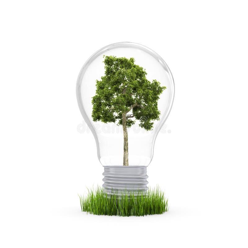 konserwaci środowisko ilustracji