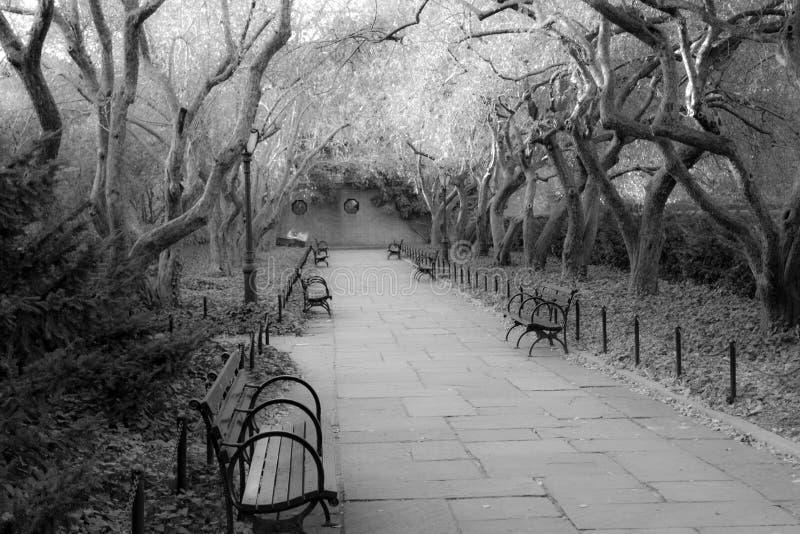 Konserwatorium ogród jest jedynym formalnym ogródem w central park fotografia royalty free