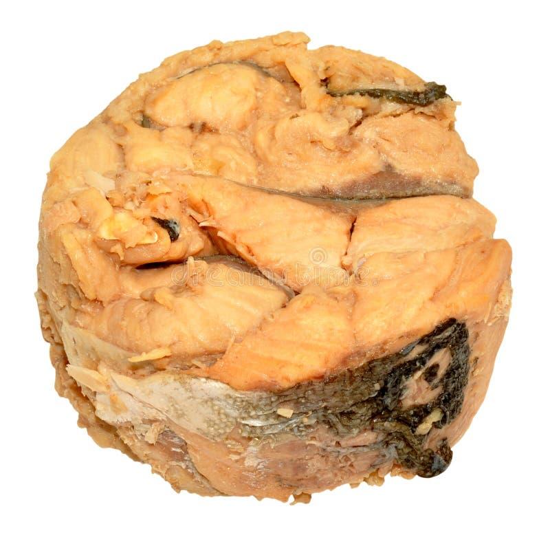 Konserwować Atlantyckiego łososia mięso obraz stock