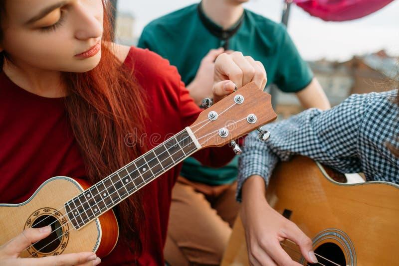 Konst för kultur för musik för instrument för gitarrukulelerad royaltyfri foto