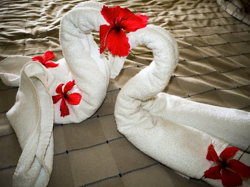 Konst med 2 handdukar arkivbild