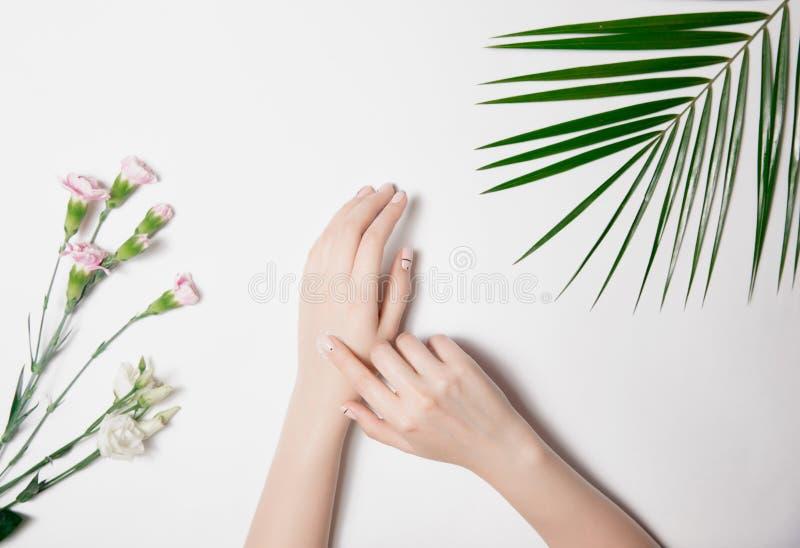 Konst som att bry sig för hud av kvinnas händer, proper manikyr med beläggningen Blekt - rosa blommor och kontrastera som är ljus arkivfoto