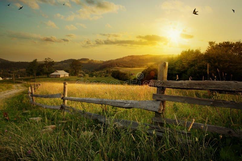 Konstbygdlandskap; lantligt lantgård- och jordbruksmarkfält arkivfoto