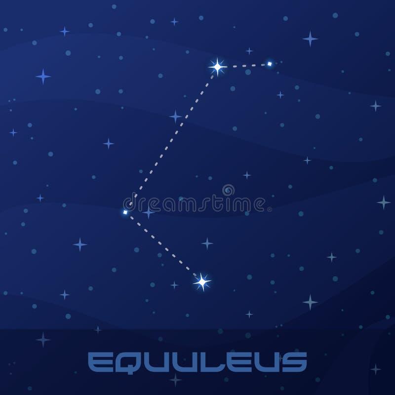 Konstellation Equuleus, kleines Pferd vektor abbildung