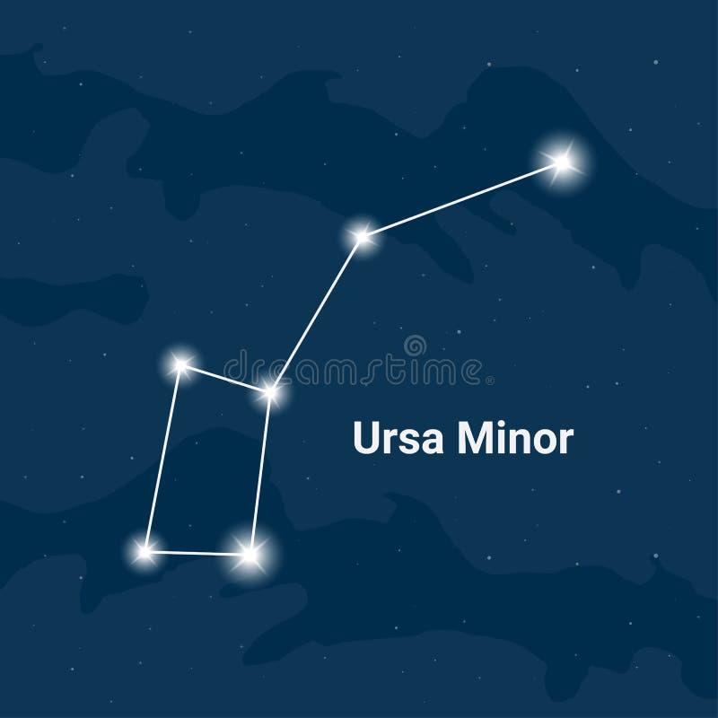 Konstellationen Ursa Minor eller den lilla björnen - vektor vektor illustrationer