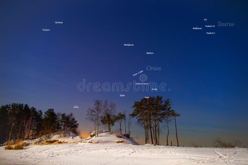 Konstellationer och stjärnor i vinterhimlen av de nordliga hemisna fotografering för bildbyråer