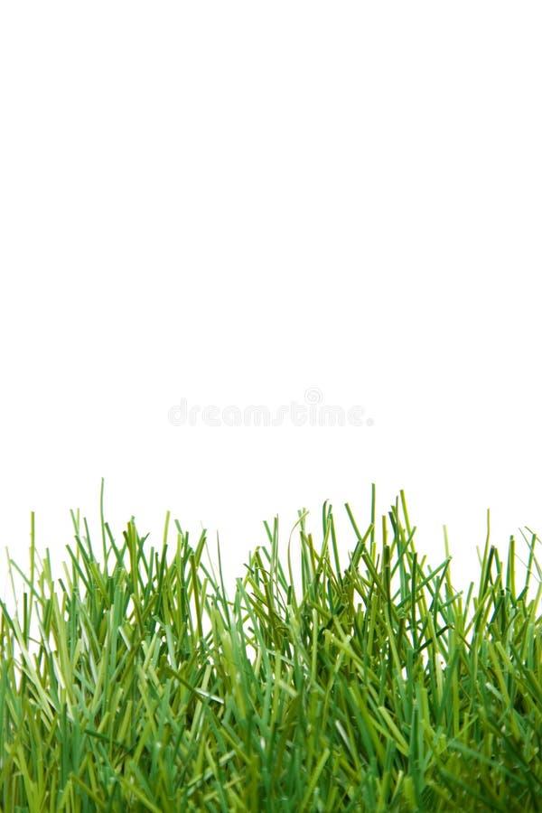 konstgjord frodig gräsgreen arkivfoton