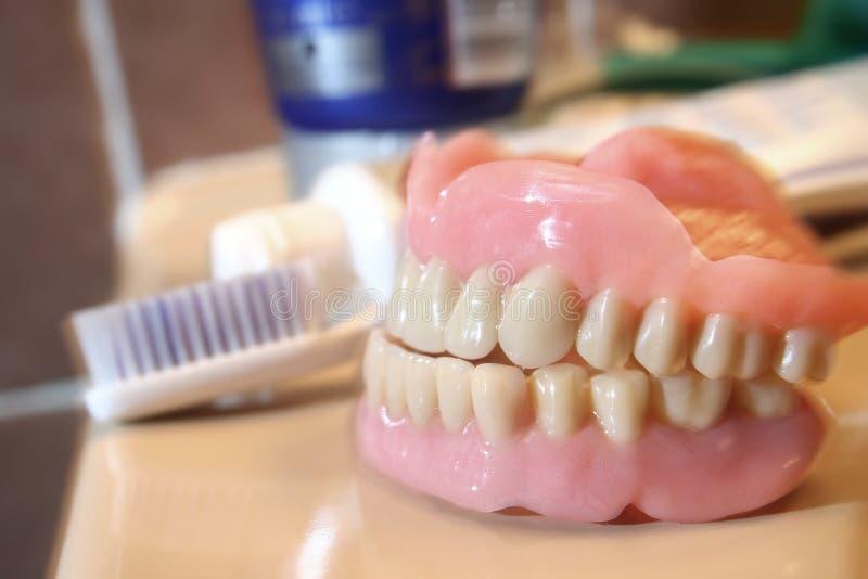 konstgjord tandprotes royaltyfri fotografi