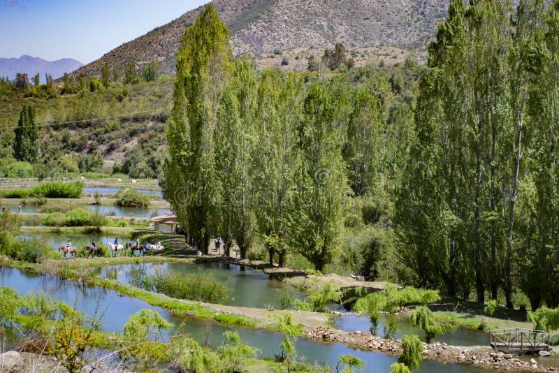 Konstgjorda lagun för att fiska royaltyfria bilder