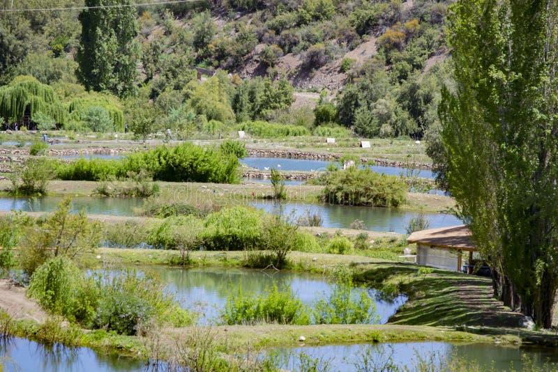 Konstgjorda lagun för att fiska arkivbild