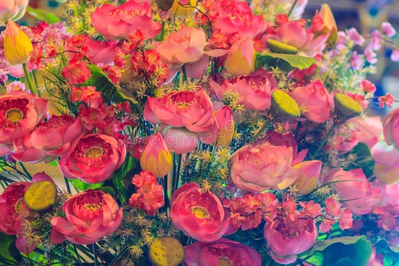 Konstgjorda rosa lotusblommablommor för Closeup, näckros arkivbilder
