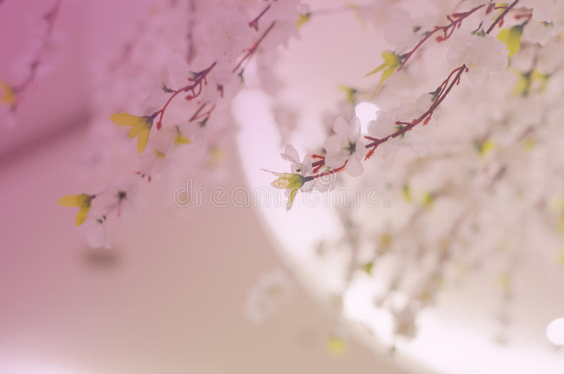 Konstgjorda Sakura blommor arkivfoto