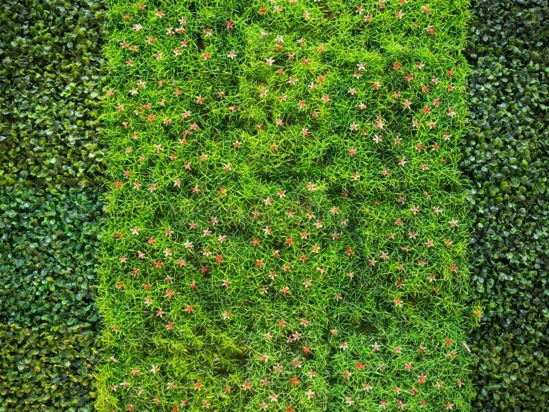 Konstgjort gräs med röda små blommor royaltyfri foto