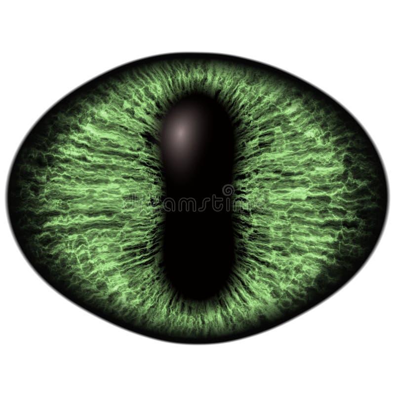 Konstigt grönt öga av det katt- djuret med den kulöra irins Detaljsikt in i isolerad rovdjurs- ögonkula stock illustrationer