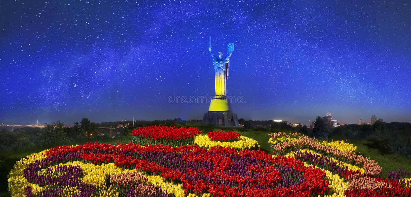 konstitutiondag ukraine arkivbild
