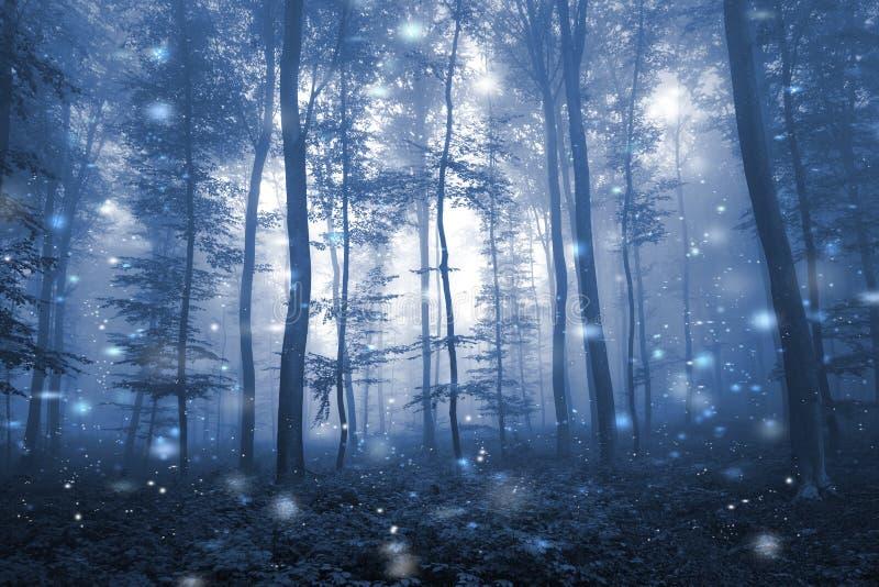 Konstnärliga blått färgar dimmig saga för skogträd royaltyfri fotografi