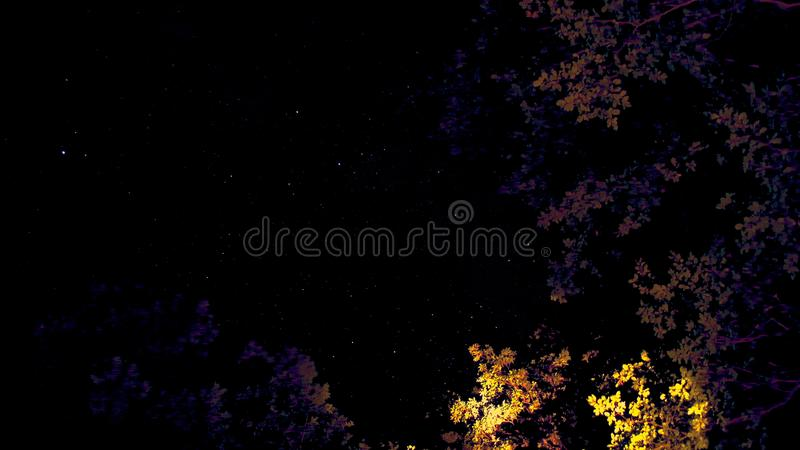 Konstnärliga himlar över med gula och purpurfärgade träd arkivbild
