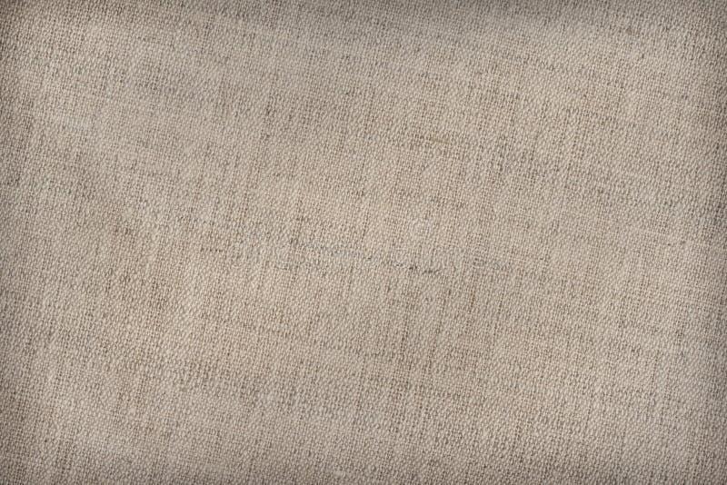 Konstnärs bomull Duck Canvas Coarse Texture Sample arkivfoto