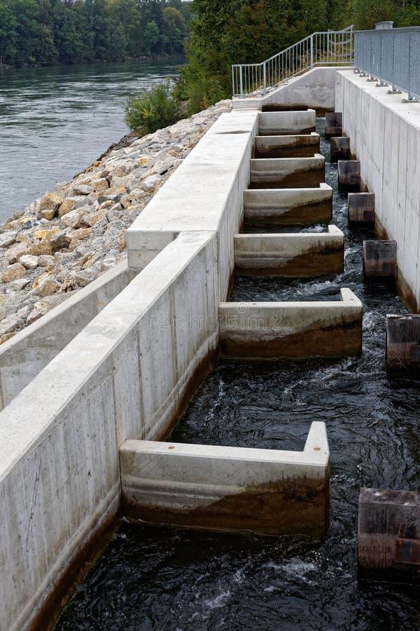 Konstrukcja drabiny rybnej na rzece, pionowy rejs z rybą obrazy royalty free