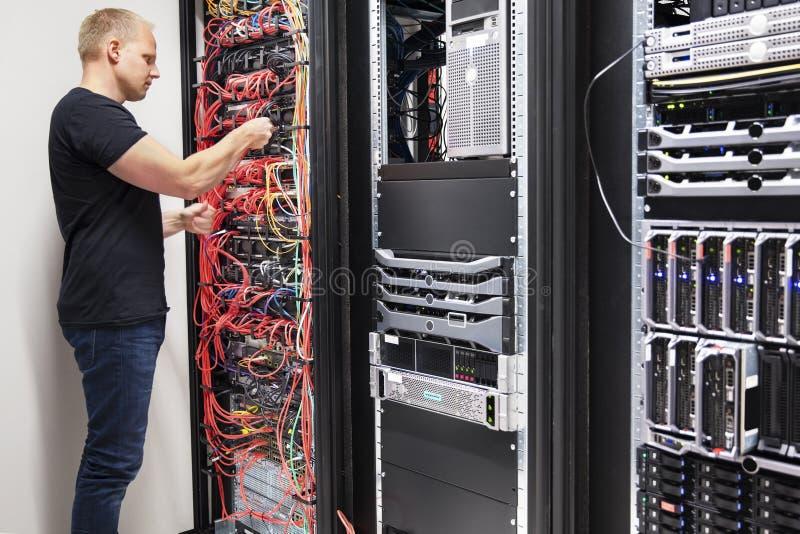 It-konsulentWorking With Network kablar förbindelse till serveror royaltyfri fotografi