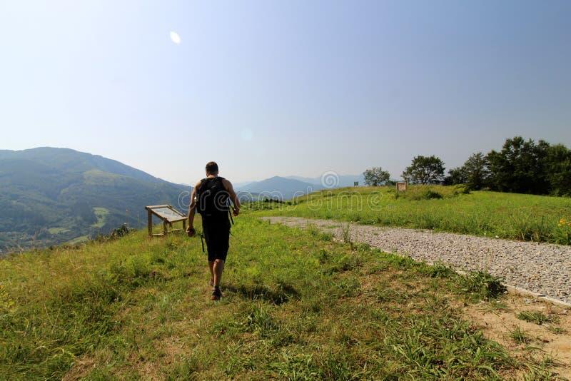 Konsultierung einer erläuternden Platte während eines Wegs in den Bergen stockbilder