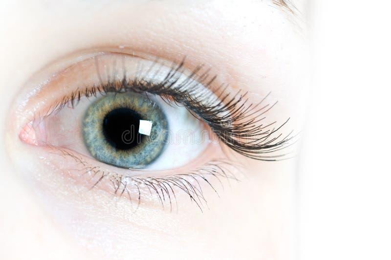 Kontaktlinsen für Augen stockbild