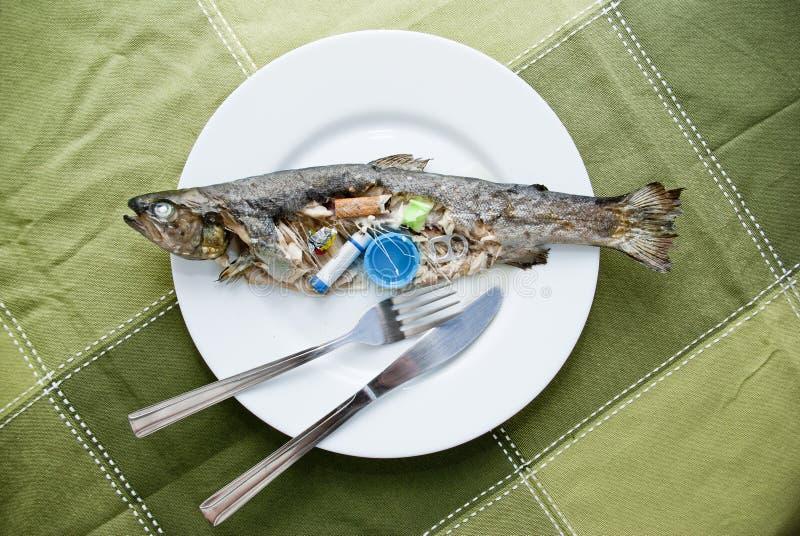Kontaminerad fisk royaltyfria bilder