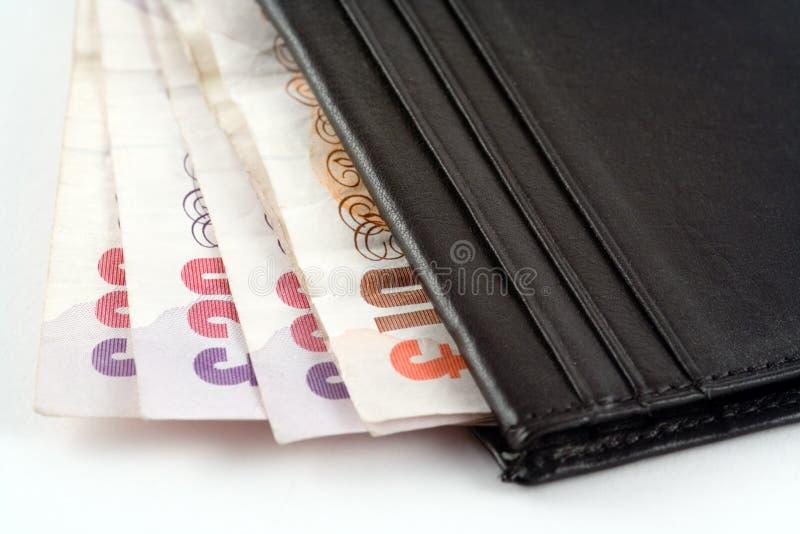 kontant plånbok arkivbild