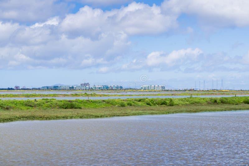 Kontorsbyggnader på shorelinen av San Francisco Bay som sedd från Bedwell Bayfront parkerar, Redwood City, Silicon Valley, royaltyfria foton