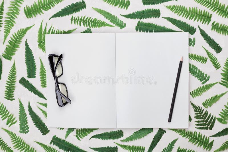 Kontorsskrivbord med ormbunkesidor, den tomma öppna anteckningsboken, svart glasögon och blyertspennan från över Lekmanna- utform royaltyfria bilder