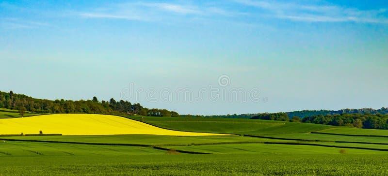 Kontrastera färger av den Shropshire landssidan Landskap arkivbilder