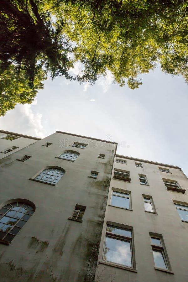 Kontrastieren Sie und Spannung zwischen menschlichen Wohnungen und Natur in einem Hinterhof stockbild