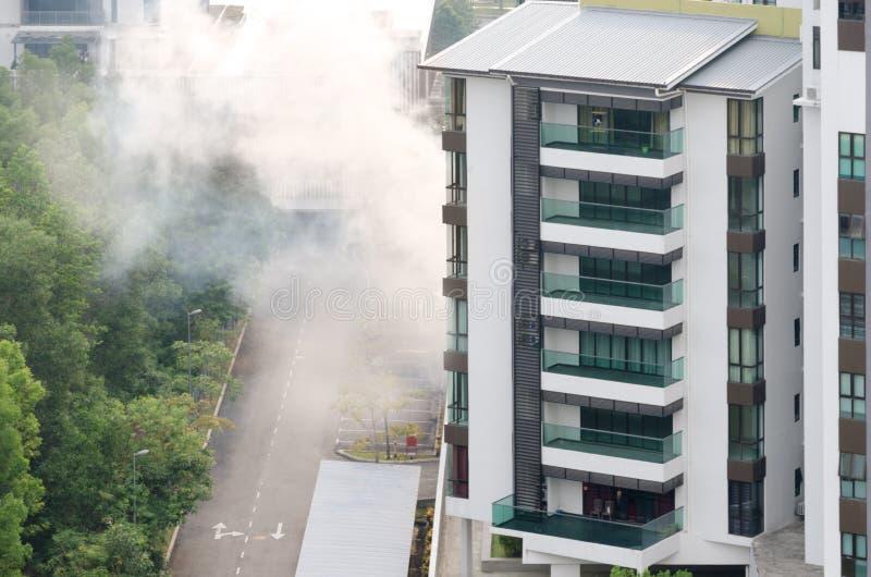 Kontroll för skadligt kryp i höghushyreshus via dengas blandningen som förhindrar spridning av sjukdomar och infektioner arkivfoto