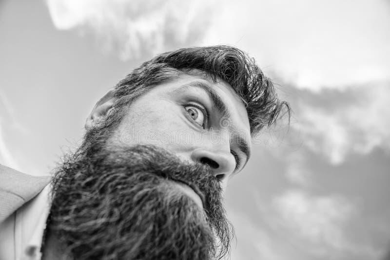 Kontrollera ut mitt långa skägg Ultimat mustasch som ansar handboken Sikt för stilig skäggig attraktiv grabb för Hipster nedersta fotografering för bildbyråer